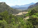 View of the mountains of Provence from the Dentelles de Montmirail