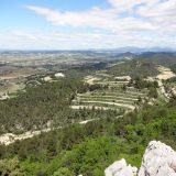 View of the Region from the Dentelles de Montmirail