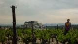 Grignan as seen through the vineyards