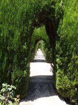 Lower Generalife Gardens