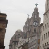 Downtown Liverpool - the Royal Liver Building